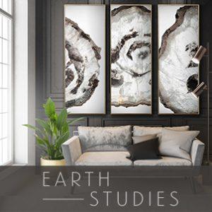 Earth Studies