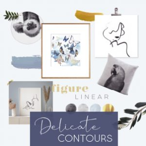 Delicate Contours