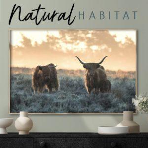 October 2021 - Natural Habitat